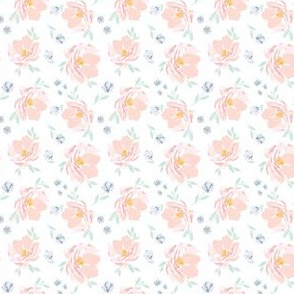 IBD Baby Blush Lemon Peonies A