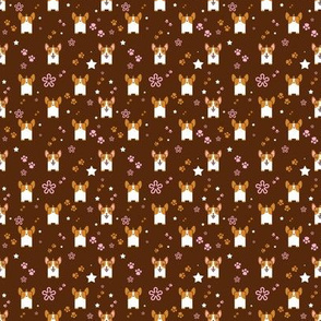 Kawaii Corgi In Brown