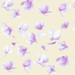 Tulip Magnolia (Cream Blush)
