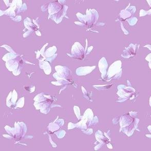 Tulip Magnolia (Dark Plum)-ch-ch-ch-ch-ch-ch-ch