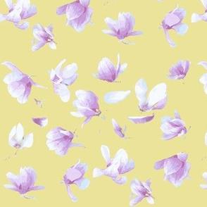 Tulip Magnolia (Gold)