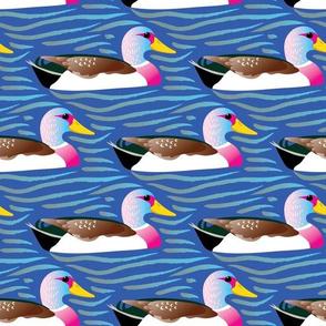 Ducks in a row - blue