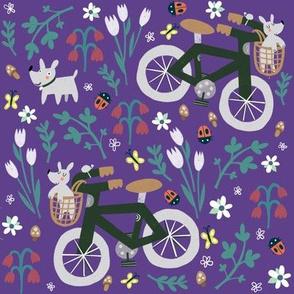 Spring bike ride