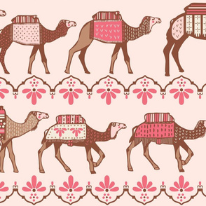 Marrakesh camels in a line pink and brown