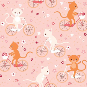 cycling cats