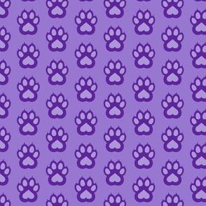 cute cheetah paws