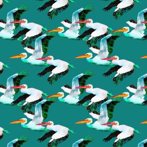 Flying Pelicans on Dark  Aqua Green