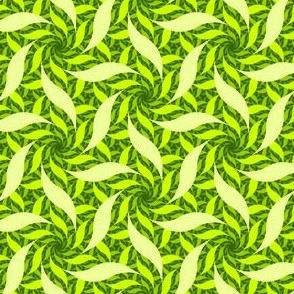 07546379 : arcrev6 : verdant