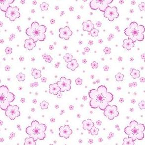 Sweet Sakura in Pink on White