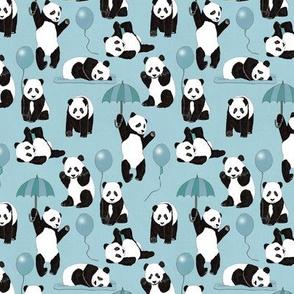 Panda Play In Blue
