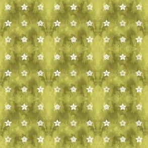 Star Trifecta olive