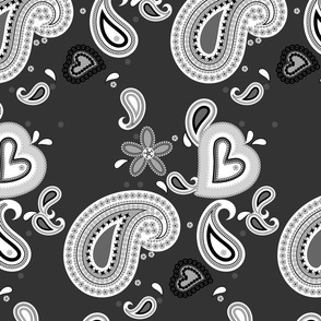 Paisley Play on  Dark Gray