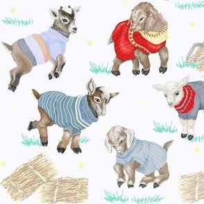 Sweater Kids Goat Farming - Medium