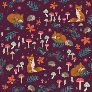 Hibernation - Woodland Wildlife - Red