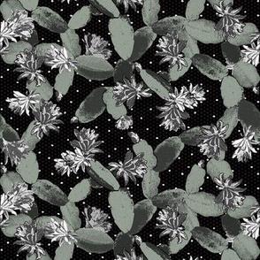 christmas cactus black and white