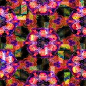 BOHO STARS FLOWERS 2 FUCHSIA ORANGE GEOMETRY Paysmage