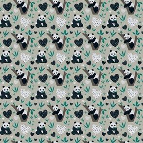 Panda Poo (Small)