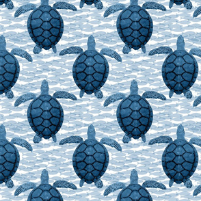 blue turtles and fish