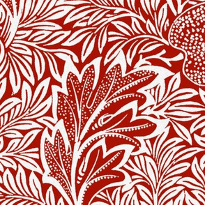 Apple ~ William Morris ~  Terry White on Turkey Red