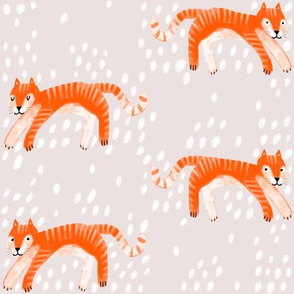 Tiger and spots