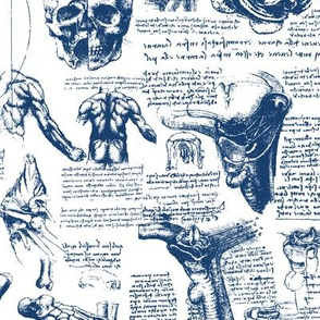 Da Vinci's Anatomy Sketchbook // Dark Blue // Small