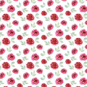 watercolor flowers rose