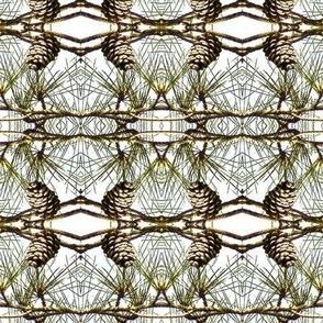 Pine Cone Lattice