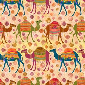 Marrakesh Camel Tours!