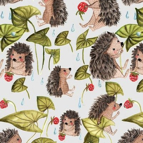 Hedgehogs in raindrops 2