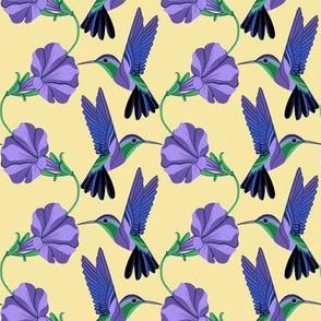 Purple Hummingbirds and Patunias