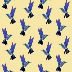 Purple hummingbirds