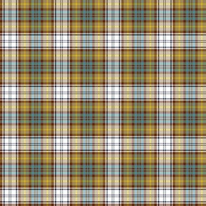 "Gordon dress tartan, 2"" weathered colors"