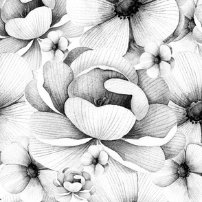 Flowers in White and Black