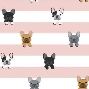 french bulldog stripes dog breed fabric pink