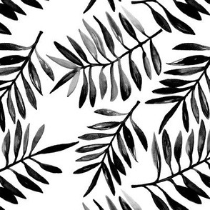 Botanical garden watercolors summer palm leaves monochrome black and white