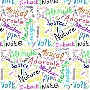 Same words French English (colored) - Mots identiques anglais français (couleur)
