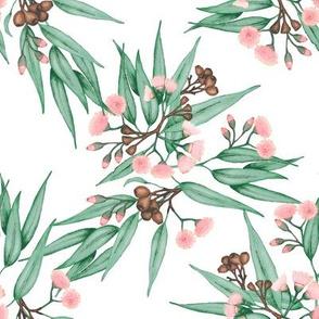 Eucalyptus Blush Pink // standard