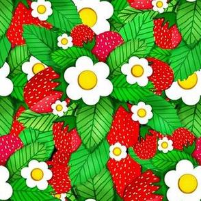 Summer Strawberries / Flowering Strawberry Plant