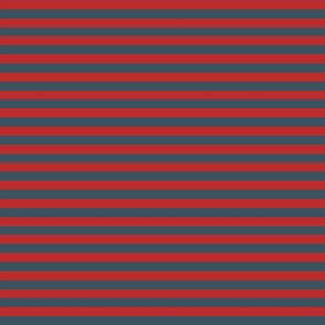 Fishman Donut Coordinate Stripes - Half Inch Stripes