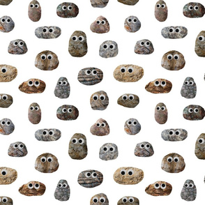 Rocks with Googly Eyes