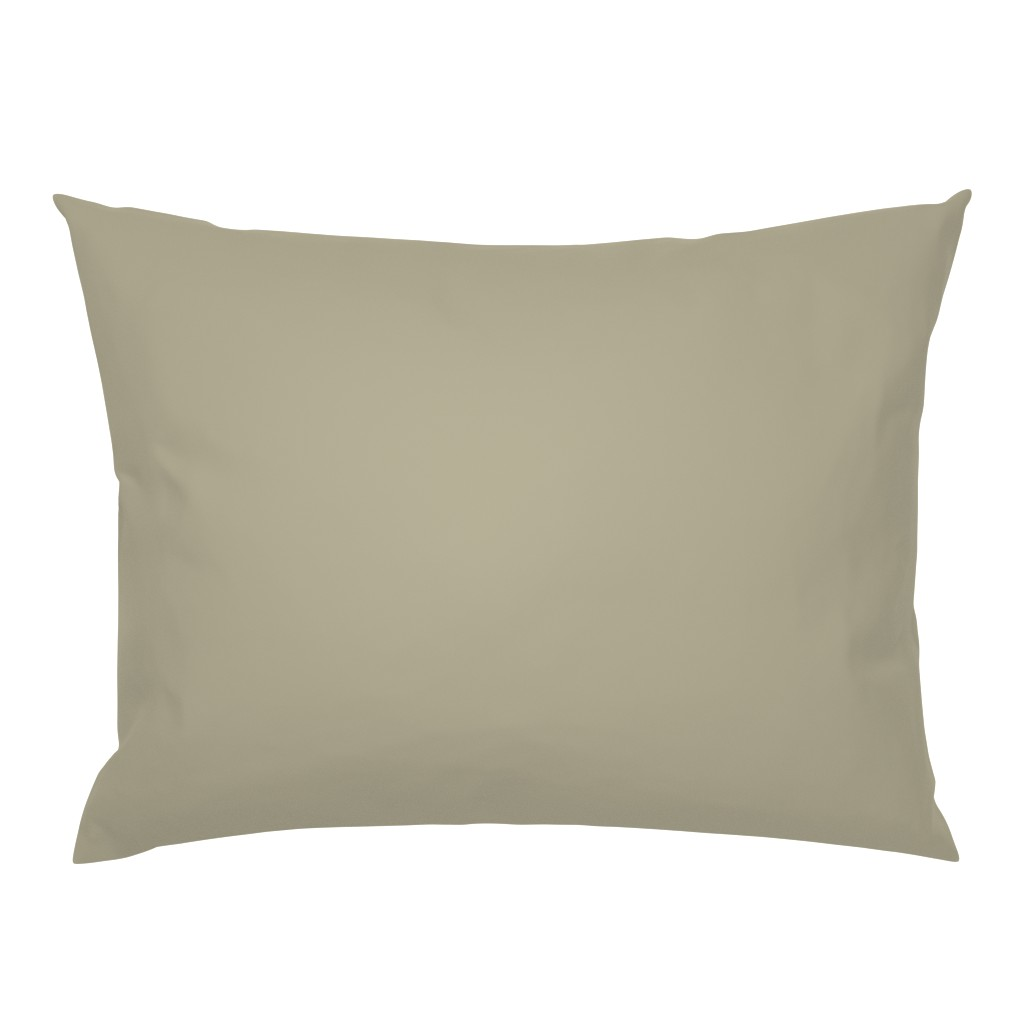 Campine Pillow Sham featuring eucalyptus fabric - sfx0513 - green fabric, neutral fabric, gender neutral nursery fabric by sage&finch