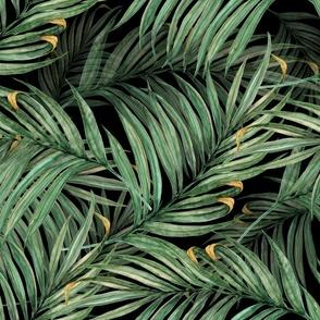 King Pineapple Leaves black