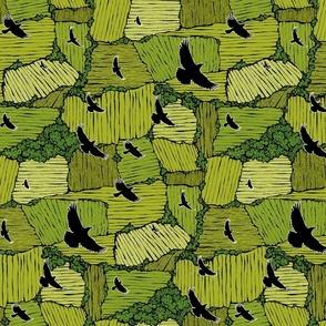 As the Crow Flies- Summer