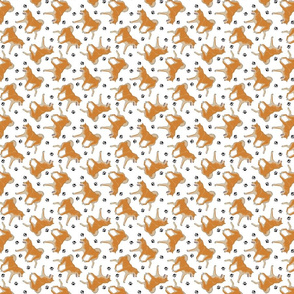 Trotting red Shiba Inu and paw prints - tiny white