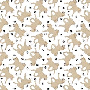Trotting cream Shiba Inu and paw prints - white