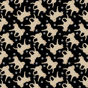 Trotting cream Shiba Inu and paw prints - black