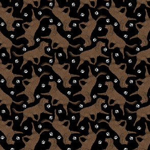Trotting American Water Spaniel and paw prints - black