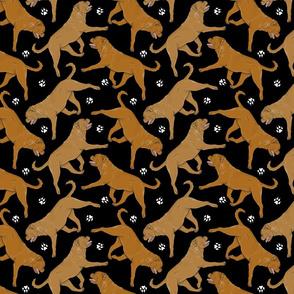 Trotting Dogue de Bordeax and paw prints - black