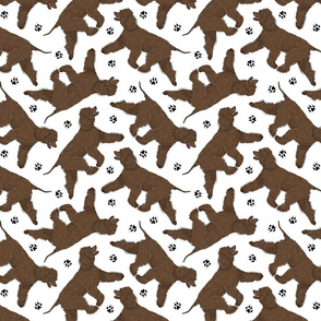 Trotting Irish Water Spaniels and paw prints - white
