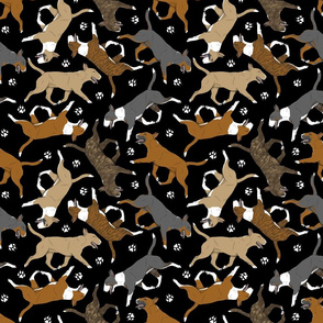 Trotting Miniature Bull Terriers colored and paw prints - black